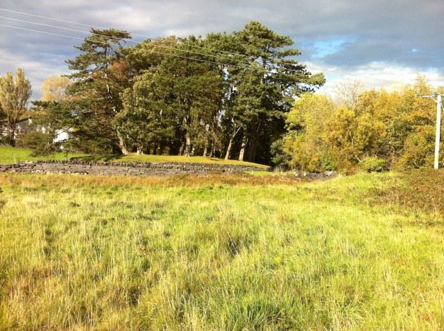 Traen Dŵr Coed Parc