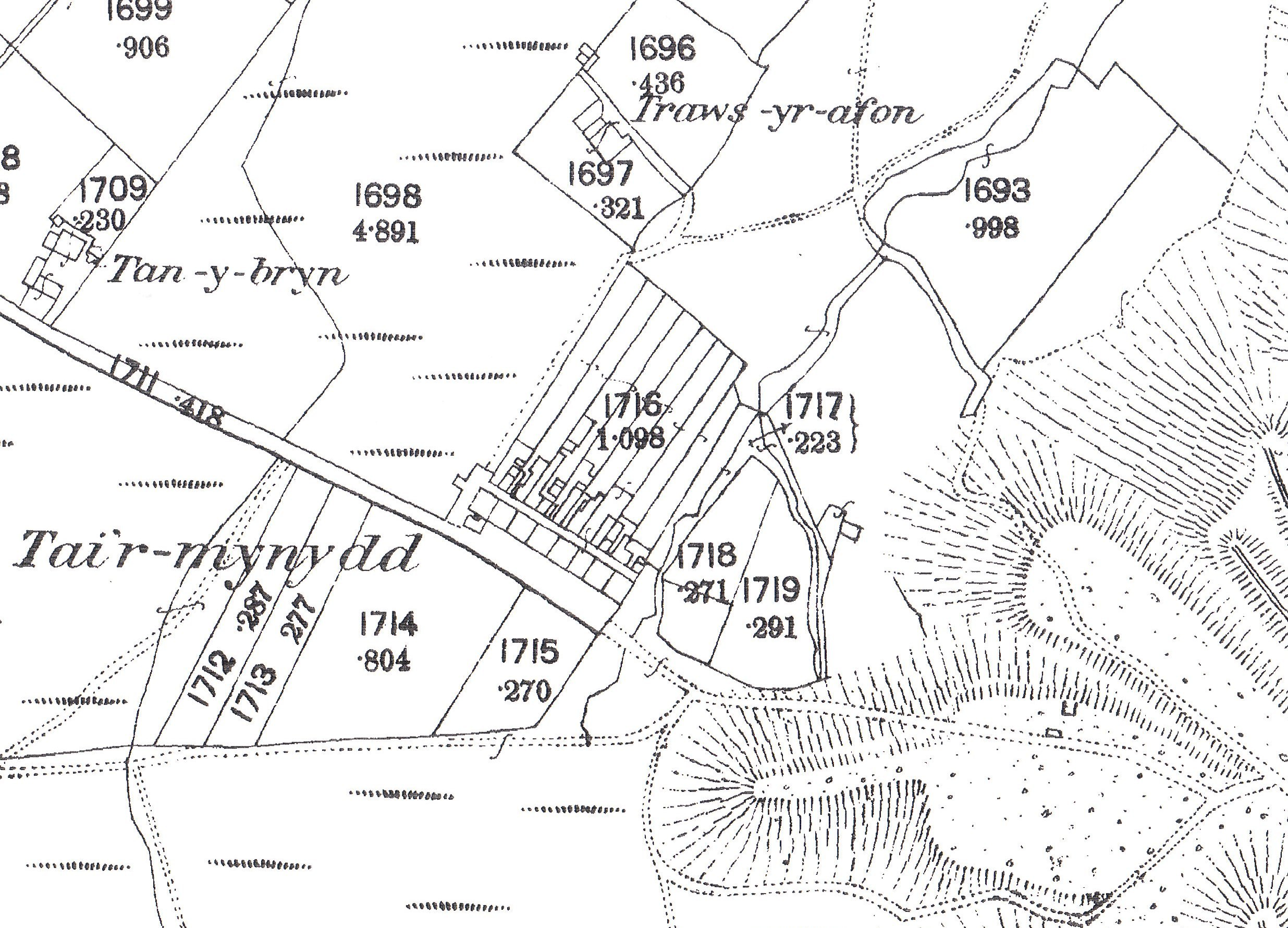 tai'r mynydd 1889 a