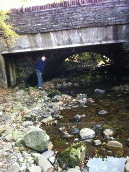 Gwilym Pont Rhos-y-nant
